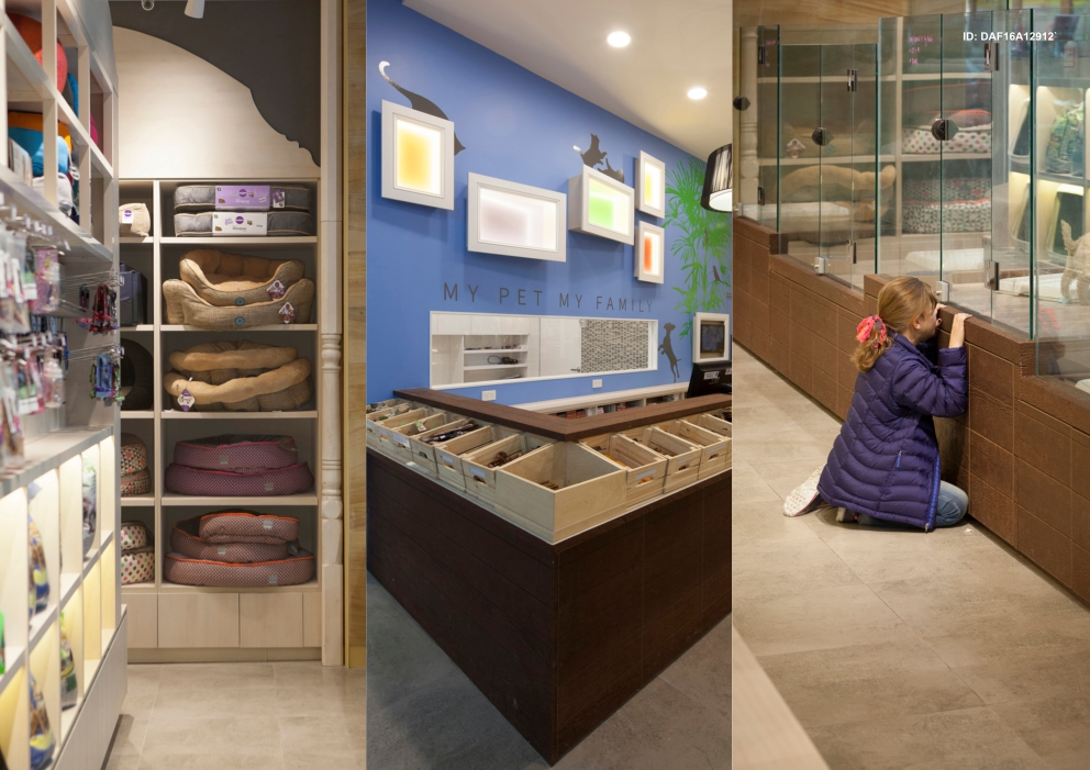 Pampered Petz By Rptecture Architects