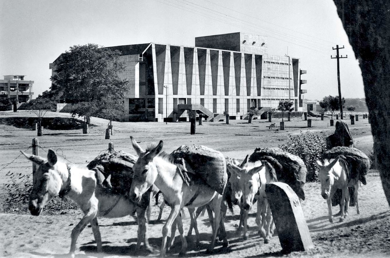 View of the building - Tagore Memorial Theatre